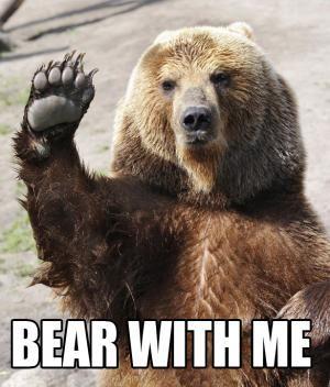 67de0c2373bb16ffad2c1dc4def6cbe0--bear-meme-videogames.jpg
